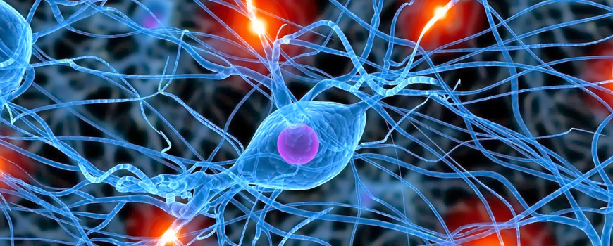 aprobada-la-primera-estrategia-para-enfermedades-neurodegenerativas
