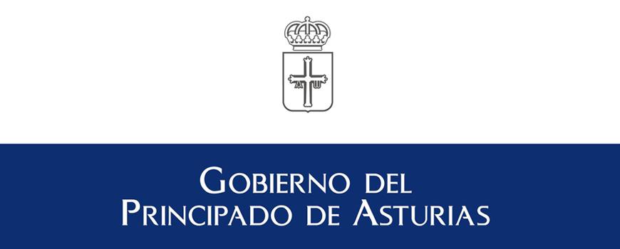 ayudas-individuales-a-personas-con-discapacidad-en-asturias