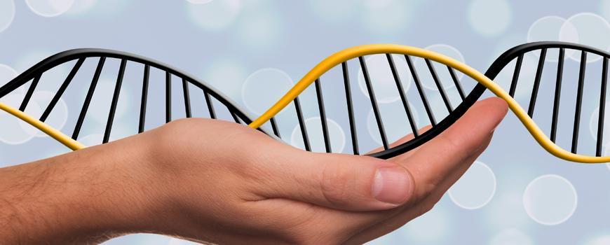genetica-y-ela-implicaciones-y-retos-en-el-conocimiento-diagnostico-y-manejo-de-la-enfermedad
